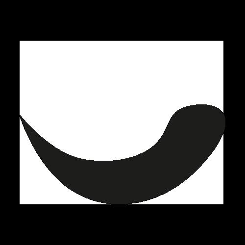 icona 1