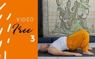 Terzo Video – Spunti per la flessibilità