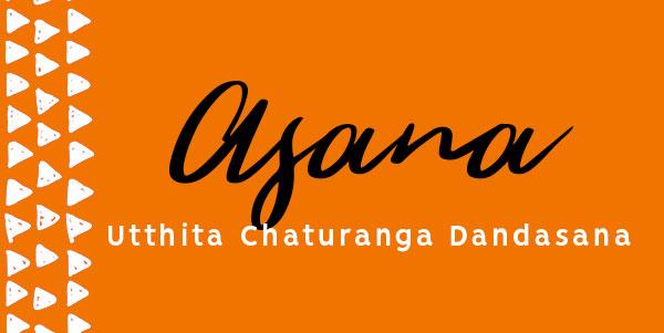 Utthita Chaturanga Dandasana