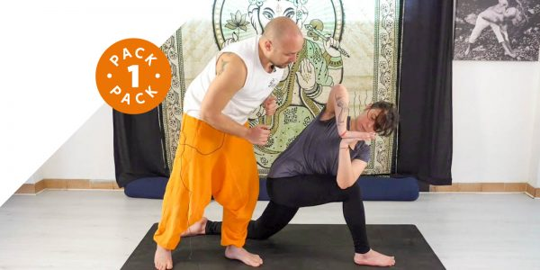 Ashwa Sanchalanasana - Torsione Laterale