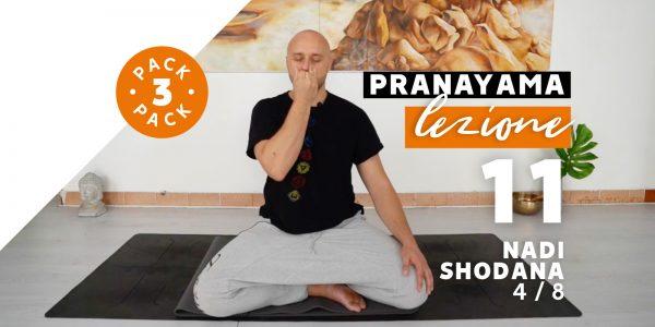 Pranayama - Lezione 11 - Nadi Shodana 4/8