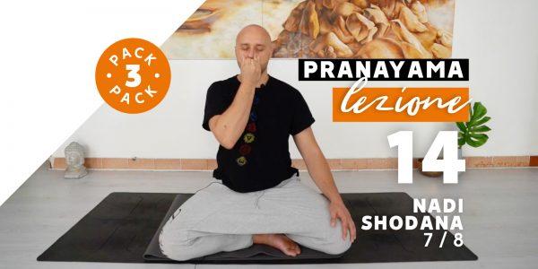 Pranayama - Lezione 14 - Nadi Shodana 7/8